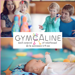 Family box Gym caline
